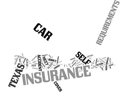 TEXAS CAR INSURANCE REQUIREMENTS Text Background Word Cloud Concept