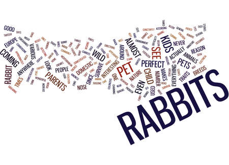THE CHILDS PERFECT PET BUNNY Text Background Word Cloud Concept Illustration