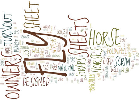 THE DIFFERENT TYPES OF FLY SHEETS Text Background Word Cloud Concept