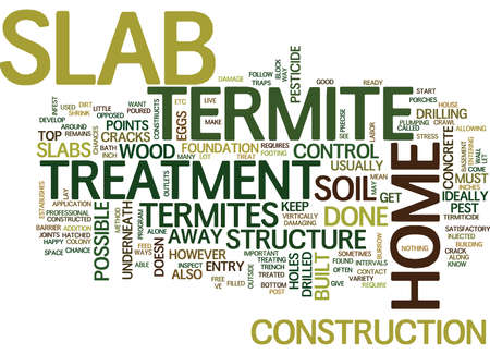 TERMITE TREATMENT SLAB Text Background Word Cloud Concept Illustration