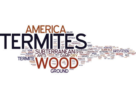 TERMITES IN AMERICA Text Background Word Cloud Concept Illustration