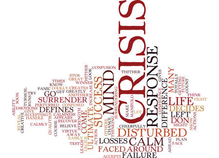 TEST YOUR ABILITY TO HANDLE CRISIS Text Background Word Cloud Concept