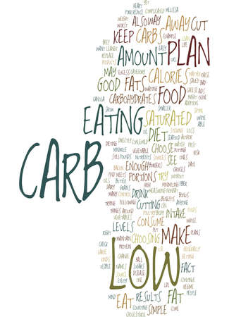 THE BEST WAY TO USE LOW CARB CONTROL Text Background Word Cloud Concept