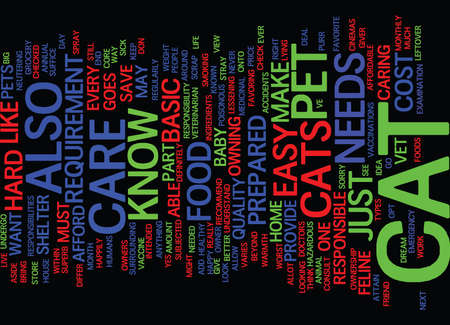 THE BASIC KNOW HOWS ABOUT CAT CARE Text Background Word Cloud Concept