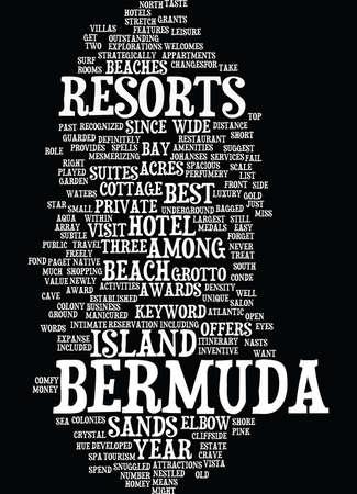 BERMUDA ROCK LIZARD Text Background Word Cloud Concept Illustration