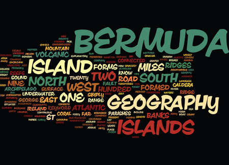 appoints: BERMUDA GOVERNMENT Text Background Word Cloud Concept Illustration