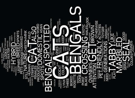 BENIDORM APARTMENTS YOUR HOME AWAY FROM HOME Text Background Word Cloud Concept