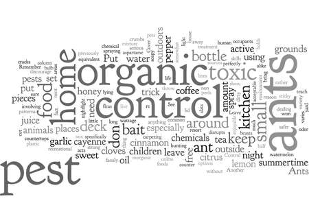 AHandy Organic Ant Control for your Home
