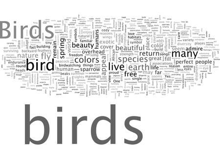 A Few Words In Praise of Birds Illustration
