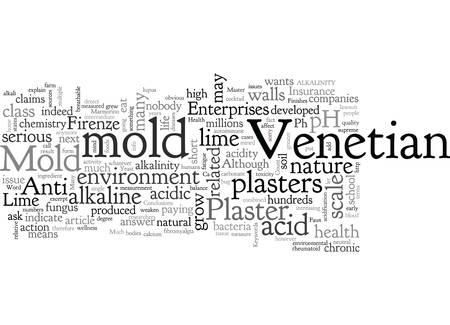 Anti Mold Venetian Plaster
