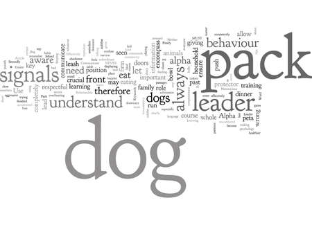 Are You the Pack Leader How to Communicate Effectively With Your Dog for a Harmonious Relationship Banque d'images - 131991145