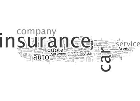 Auto Insurance Policy Assets and Customer Assistance