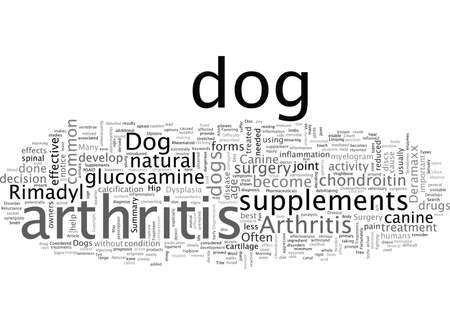 Arthritis In Dogs What You Can Do To Help Your Dog