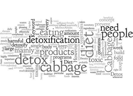 Cabbage Detox Diet 向量圖像