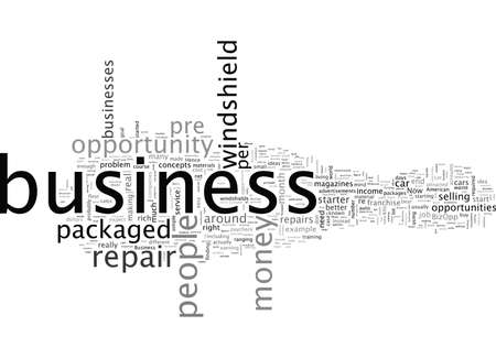Business Opportunities Why Pre Packaged BizOpps Are Not Worth The Money