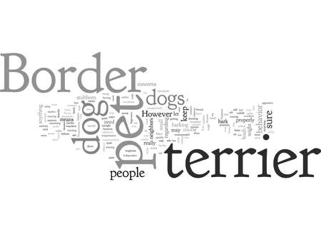 border terrier pet dog