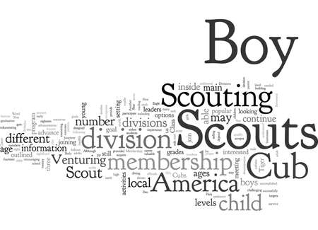 Boy Scout Membership Divisions Reviewed