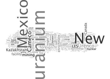 Cameco s Uranium for New Mexico s New Enrichment Facility