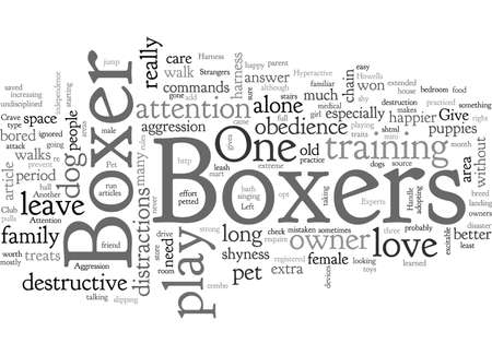 Can You Handle a Pet Boxer Dog