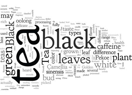 Black Tea Illustration
