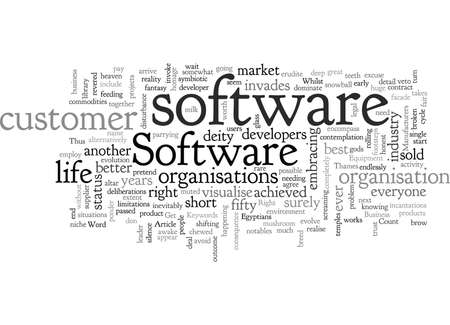 Can Software Get It Right For Business Owners And Professionals 向量圖像