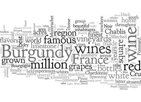 Bourgogne France Célèbre Pour Ses Vins Vecteurs