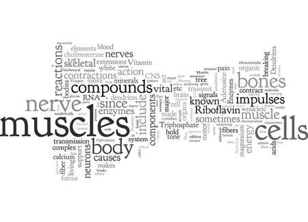 Bones and Back Pain Ilustrace