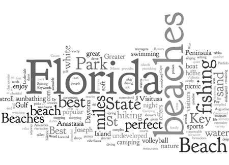 Best Beaches in Florida Vettoriali