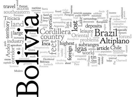 Bolivia A Geographic Portrait 스톡 콘텐츠 - 132216024