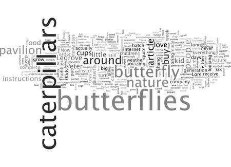 Butterflies In The Bedroom