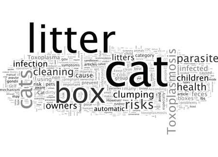 Cat Litter Box Health Considerations