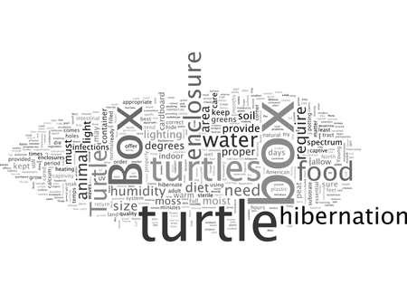 Gefangenschaft der nordamerikanischen Dosenschildkröte Vektorgrafik