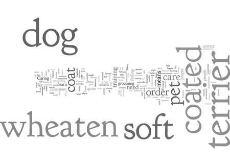 coated dog pet soft terrier wheaten Vektoros illusztráció