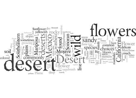 Desert Wild Flower What are Your Choices Illustration