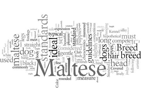 Does Your Maltese Stand Up to the Supposed Standard