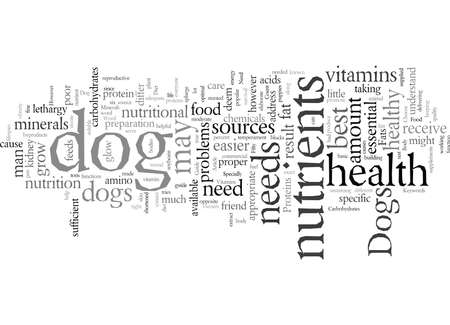 Dogs Need Good Food Too Your Guide To Your Dog s Diet