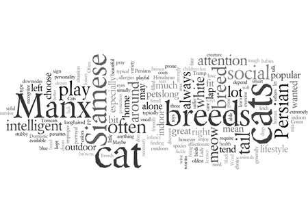 Domestic Cat Breeds Çizim