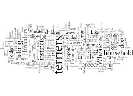 dog terrier wheaten 向量圖像