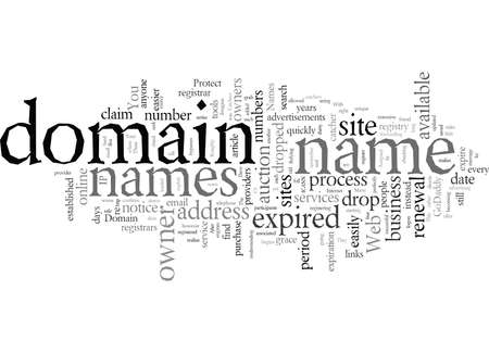 Domain Names Protect Yours From Drop Catchers