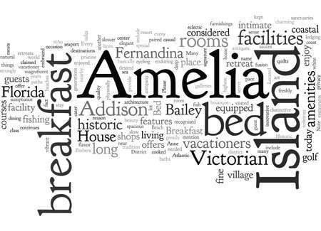 Amelia Island typography text art vector illustration