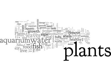 Aquarium Plants, typography text art vector illustration Ilustrace