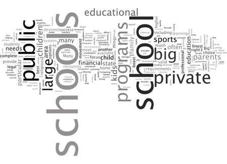 Big Schools Big Programs