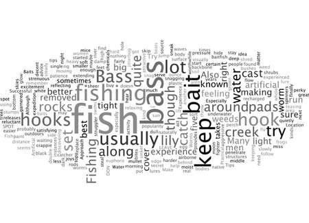 bass fishintips