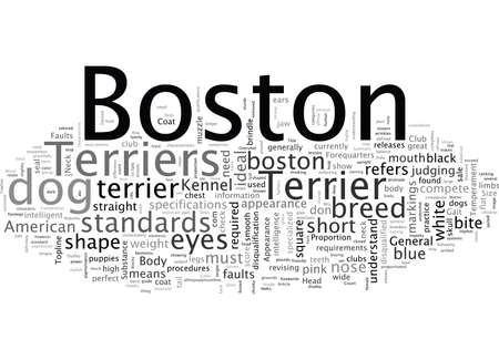 Boston Terrier The Standard and Does it Matter