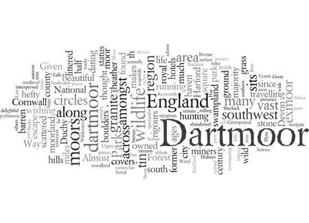 Dartmoor England s Last Great Wilderness