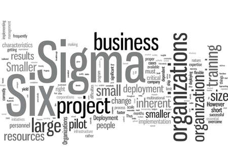 Six Sigma Deployment In Smaller Organizations