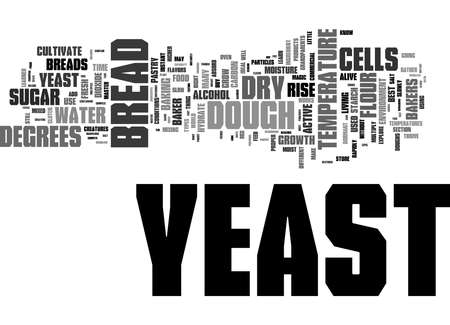 Word Cloud Summary of How Yeast Works Article Banque d'images