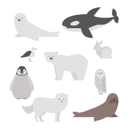 Conjunto De Dibujos Animados Animales Polares Para Bebés Y Niños ...