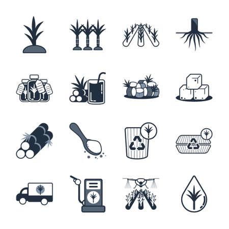 Sugarcane icon set,Vector and Illustration. Vetores
