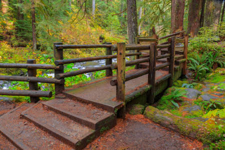 sol duc: Bridge in Sol Duc rainforest at Olympic National Park, Oregon Coast